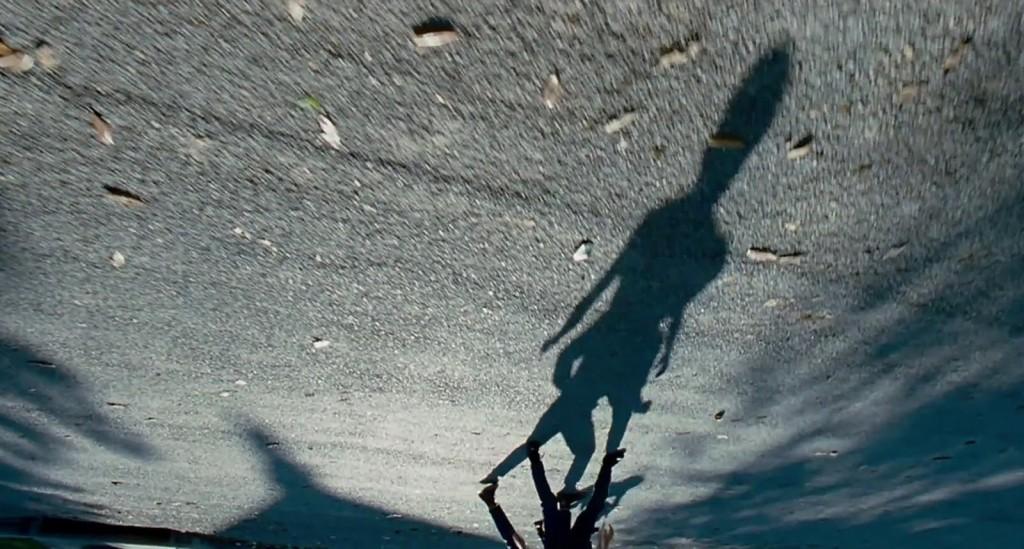 Tree-of-Life-Shadow