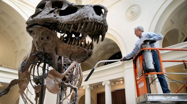 Sundance Doc Reviews: 'Dinosaur 13,' 'To Be Takei,' 'Fed Up,' 'Life Itself'